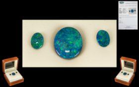 Lightning Ridge Loose Black Opals.