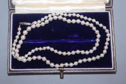 A single strand graduated cultured pearl necklace, with white metal clasp, 44cm.