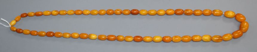 A single strand graduated amber bead necklace, gross weight 61 grams, largest bead is 24mm by