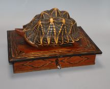 An early 20th century Ceylonese hardwood and tortoiseshell jewellery casket length 33cm