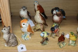 A Beswick seated cat and ten models of birds, including six medium-sized models, barn owl, jay,