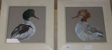 Andrew Fitchett, pair of watercolours, Studies of water birds, signed, 29 x 29cm
