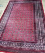 A Pakistan Bokhara red ground rug 310 x 215cm