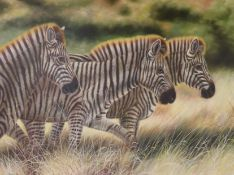 Zhoukans, oil on canvas, 'Zebras', signed and dated 2002 74 x 100cm
