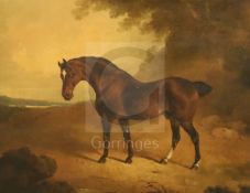 Early 19th century English Schooloil on boardBrown horse in a landscape18 x 23.25in.