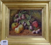 Manner of Oliver Clare, oil on canvas laid on board, Still life of fruit, 19 x 23cm