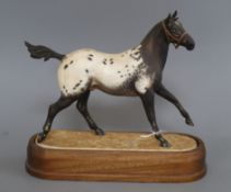 An Appaloosa stallion modelled by Doris Lindner for Royal Doulton height 29cm