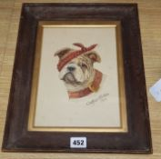 Arthur Cooke, watercolour, Bulldog with an eye patch, signed and dated 1917, 25 x 18cm
