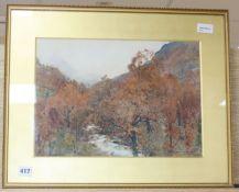 Alfred Heaton Cooper (1863-1929), watercolour, Autumnal mountainous river landscape, signed, 27cm