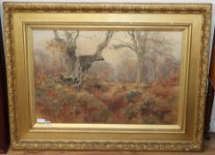 Benjamin John Ottewell (1847-1947), watercolour, 'Woodland scene'