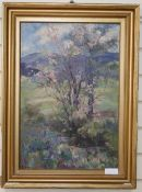 Blanche Mathews, oil on canvas, 'Fleeting blossom in the Kentmere valley, signed, 55 x 37cm