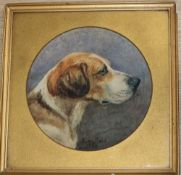 Minnie Rosa Bebb (1857-1938), portrait of a foxhound, watercolour, signed and dated 1886, framed