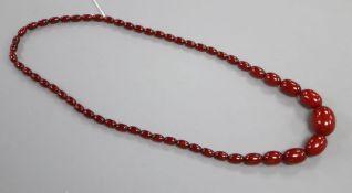 A single strand graduated cherry amber bead necklace, 75cm, gross 66 grams.