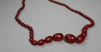 A single strand graduated oval simulated cherry amber necklace, 72cm, gross 64 grams.