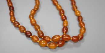 A double strand oval amber bead necklace, 66cm, gross 58 grams.