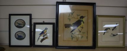 19th century Chinese School, gouache on pith paper, two studies of waterbirds, 6 x 7cm, an English