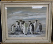 Audrey D. Johnson, gouache and watercolour, King Penguins, initialled and dated 1908 verso, 23 x