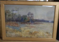 Frank Saltfleet (1860-1937), watercolour, Landscape with a full moon, signed, 32 x 48cm