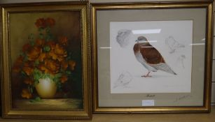 Michael J. Clark, pencil and watercolour, Study of a Redoubt pigeon, signed and dated '86, 30 x 33cm