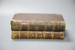 Victor Hugo - Les Miserables, 1881 and 1882, two volumes