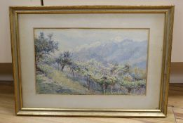 George Samuel Elgood (1851-1943), watercolor, Vineyards above stream, signed and dated 1909,