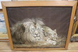 After Herbert Dicksee, silkwork panel, Lions, 66 x 86cm