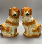 A pair of modern Staffordshire pottery dogs, 33cmCONDITION: One dog with a series of glaze
