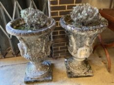 A pair of weathered composition stone urns and pedestals, diameter 56cm height 81cm