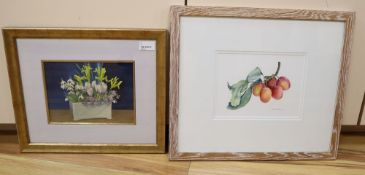 Marian Tumelty VPRMS (Contemporary), Still life of plums on a branch, signed and dated '92, and