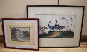 19th century Chinese School, gouache on paper, Study of two exotic birds, 20 x 33cm and a machined