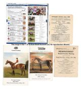 Group of Newmarket racecards including Two Thousand and One Thousand Guineas days, comprising 25 for