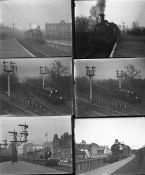 Approximately 50 negatives comprising approximately 28 large format glass negatives and