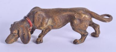 A COLD PAINTED BRONZE DOG. 12 cm x 4 cm.