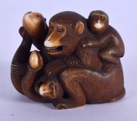 A 19TH CENTURY JAPANESE MEIJI PERIOD CARVED IVORY OKIMONO modelled as two monkeys. 5 cm x 3.5 cm.