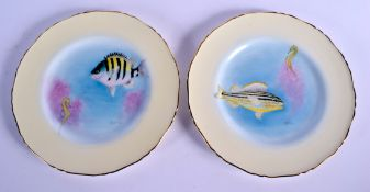 Royal Worcester ichthyological pair of plates painted by Harry Ayrton, sign, with fish, titled verso