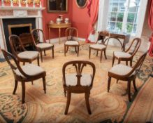 A SET OF EIGHT WILLIAM IV ROSEWOOD DINING CHAIRS, having carved Prince of Wales feather back and