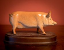 A COLLECTION OF 11 PORCELAIN PIGS TO INCLUDE A PAIR OF ROYAL DOLTON BROWN AND BLACK PORCELAIN