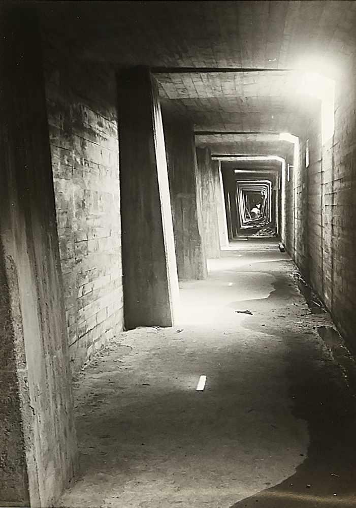 Albert Renger-Patzsch (1897-1966)   Kunstauktion, Bilder