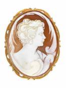 Gemmen-Anhänger/Brosche GG 585/000 mit einer feingeschnitzten, ovalen Muschelgemme 50 x 38