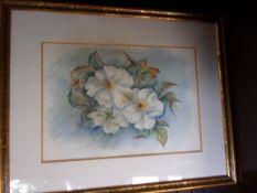 "Annelle, Van S.D.A.S., Watercolour ""Cherokee Rose"" 18"" x 14"""