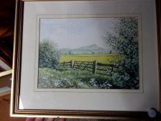 Garland, John - A view of Glastonbury