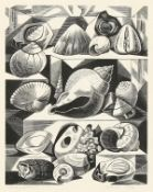 Monica Poole (1921-2003) British,' Shells and Fossils' woodblock print, signed and inscribed and