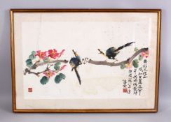 A 20TH CENTURY CHINESE PAINTING OF BIRDS AND FLORA, framed, with calligraphy and seals, framed