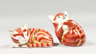 A ROYAL CROWN DERBY PAPERWEIGHT SLEEPING GINGER KITTEN limited edition with certificate. No. 502