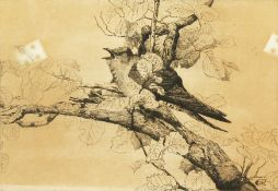 George Edward Collins (1880-1968) British, a small bird warbling amidst branches, etching, signed in