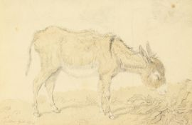"""A study of a donkey grazing, watercolour and pencil, unframed, 3.5"""" x 5.5""""."""