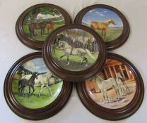 5 limited edition Spode horse plates by Susie Whitcombe