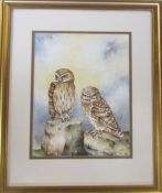 Framed watercolour of two owls by Christopher Hughes (b.1955) signed lower right corner 45 cm x 54