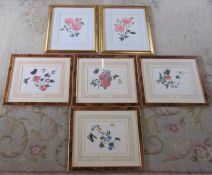 6 limited edition botanical prints inc Halcyon Days signed in pencil by Alastair Gordon Marquess