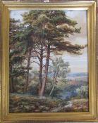 Framed watercolour of a rural scene 28 cm x 35 cm (size including frame)